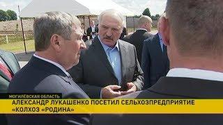 Download Александр Лукашенко посетил Белыничский район Video