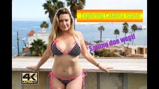 Download CATALINA ISLAND AND MY FAVORITE BIKINI! - Lazy Gecko VLOG 65 Video