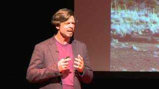 Download Let's put robots in space: Philip T. Metzger at TEDxOrlando Video