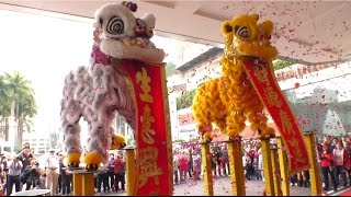 Download InterContinental Hong Kong, 2017 Chinese New Year Celebrate Lion Dance Video