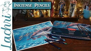 Download Painting the Dolphin cover for the new Derwent Inktense Pencil Tins - Lachri Video