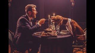 Download Brett Eldredge - ″Love Someone″ (The Edgar Cut) Video