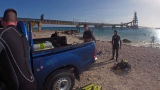 Download Diving Bonaire's Salt Pier - Easter 2013 Video