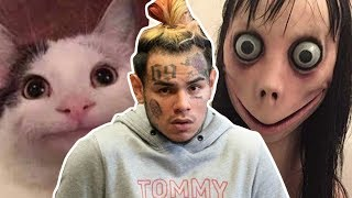 Download Tekashi 6ix9ine saved by polite cat Video