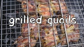 Download Quails on grill - best recipe Video