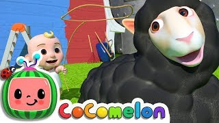 Download Baa Baa Black Sheep | CoCoMelon Nursery Rhymes & Kids Songs Video