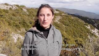 Download La réserve de biosphère Luberon-Lure met en œuvre les Objectifs de développement durable (France) Video