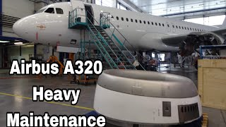 Download Aircraft Maintenance | Walk Around Airbus A320 During Heavy Maintenance Video