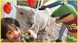 Download Kids Strawberry Picking at the Farm with Ryan ToysReview! Family Fun Kids Play Area Farm Animals Video