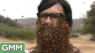 Download 10,000 Bees Beard Video