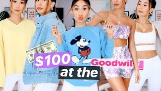 Download WHAT $100 DOLLARS GETS YOU AT THE GOODWILL 🤯 17 ITEMS?! | MyLifeAsEva Video