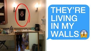 Download r/Letsnotmeet THEY'RE LIVING IN MY WALLS! 😱😱😱 Video