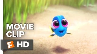 Download Finding Dory Movie CLIP - Baby Dory (2016) - Ellen DeGeneres, Ed O'Neill Movie HD Video