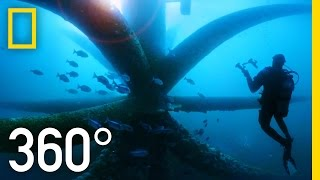 Download 360° Dive Through an Oil Rig Ecosystem | National Geographic Video