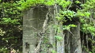 Download RIVER DOCUMENTARY; Hikkake river 2 引欠川 Ruin of Tatemata mine 立又鉱山跡 2003 Video