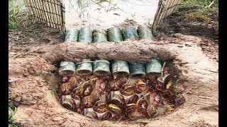 Download Wow! Smart Man Catch A Lot Of Crabs By Creative Deep Hole Crab Trap Using 6 Bamboo Video