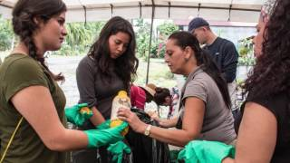 Download GUPES Green Gown Awards 2016 – Latin America and the Caribbean – REDIES – Finalist Video