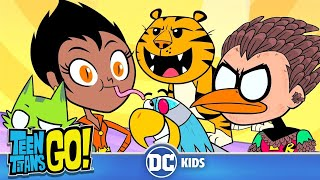 Download Teen Titans Go! | Animals Alive | DC Kids Video