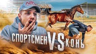 Download Кто быстрее? Выбери правильную лошадь, что бы выжить! Человек Против Зверя! Video