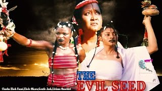 Download The Evil Seed 1 & 2 - 2015 Latest Nigerian Nollywood Movie Video