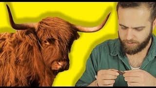 Download Türkler Kuru Amerikan Etlerini Tadıyor Video