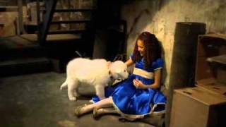 Download Madison Pettis singing in The Search for Santa Paws Video