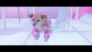 Download Ariana Grande - thank u, next (the fragrance) Video