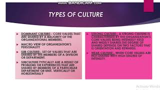 Download ORGANIZATION CULTURE ORGANIZATION BEHAVIOUR Video