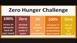 Download Zero Hunger Challenge - UN Secretary-General message Video