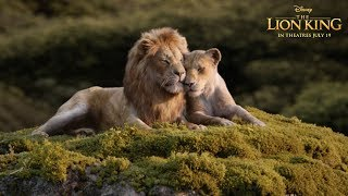 Download ″Can You Feel The Love Tonight?″ TV Spot   The Lion King Video