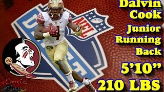 Download Dalvin Cook: 2017 NFL Draft Prospects 101 Series Video