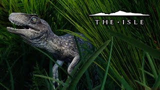 Download The Baby Utahraptor - The Isle Video
