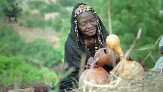 Download Musical Traditions in Mali | Now, Money is More Important than Humanity. Video