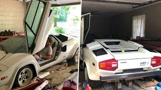 Download A Woman Looked Inside Her Grandma's Old Garage – And Discovered An Incredible Supercar Surprise Video