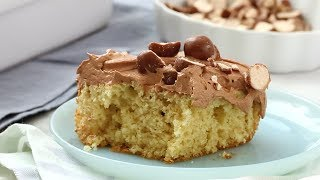 Download Vanilla Sheet Cake with Malted-Chocolate Frosting - Martha Stewart Video