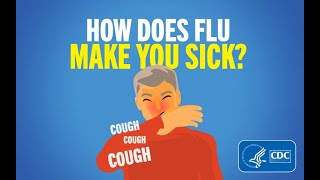 Download How Does Flu Make You Sick? Video
