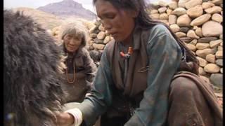 Download Dolpo, les enfants de la montagne Video