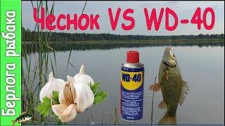 Download WD40 VS Чеснок на карася, что лучше ? Улучшают клев на рыбалке? Video