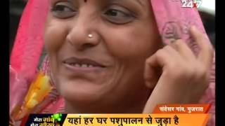 Download Animal Husbandry and women empowerment in Gujarat Video