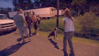 Download Neighborhood Riled Up Over Scared, Aggressive Dog Video