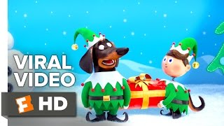 Download The Secret Life of Pets VIRAL VIDEO - Holiday Video Greeting (2016) - Animated Movie HD Video