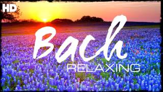 Download The Best Relaxing Classical Music Ever By Bach - Relaxation Meditation Focus Reading Video