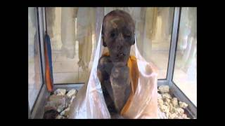 Download Video of MUMMY OF 500 year old LAMA found in india Video