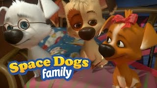 Download SPACE DOGS FAMILY - Shoot for the Stars Video