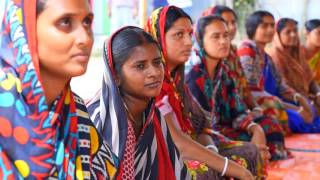 Download Improving shrimp production in Bangladesh Video