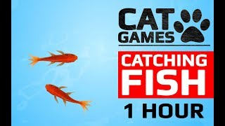 Download CAT GAMES - 🐟 CATCHING FISH 1 HOUR VERSION (VIDEOS FOR CATS TO WATCH) Video