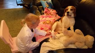 Download Little girl play veterinarian after her dog hurt his paw | Charlie the Dog and Family Video