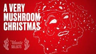 Download Santa Is a Psychedelic Mushroom Video
