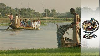Download The Bangladeshi Economic Innovator Lifting People From Poverty Video