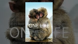 Download One Life Video